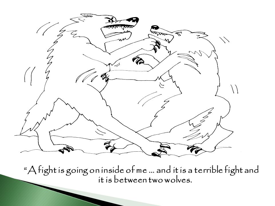 A fight is going on inside of me … and it is a terrible fight and it is between two wolves.