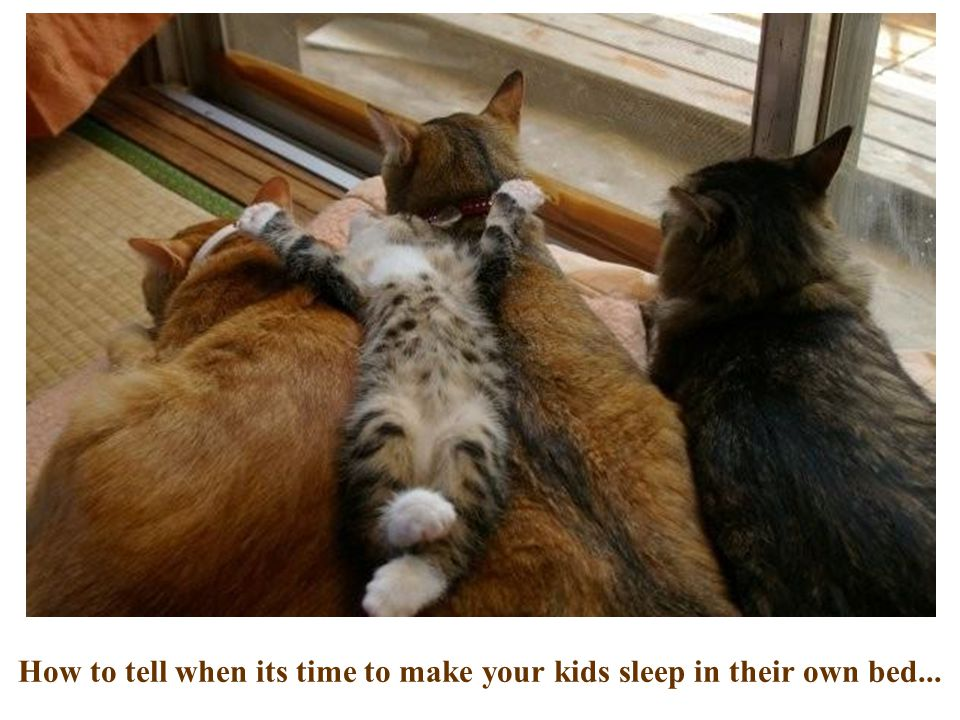 How to tell when its time to make your kids sleep in their own bed...