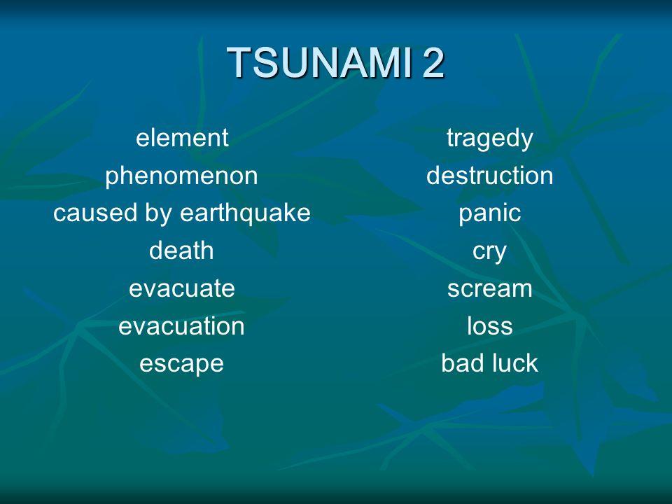 TSUNAMI 2 element phenomenon caused by earthquake death evacuate evacuation escape tragedy destruction panic cry scream loss bad luck