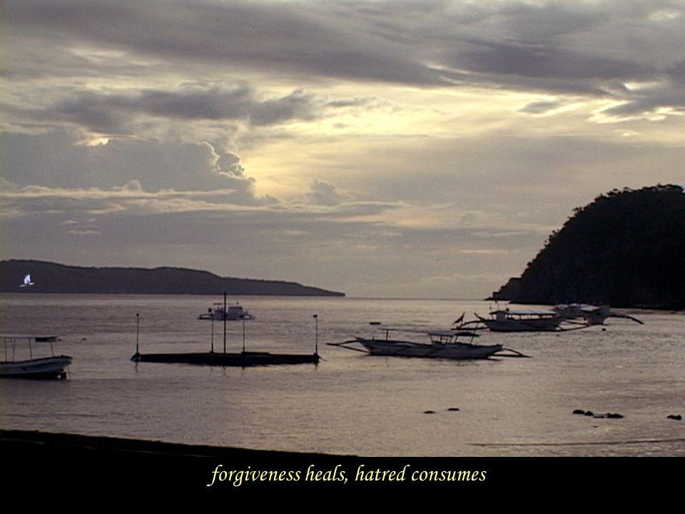 forgiveness heals, hatred consumes