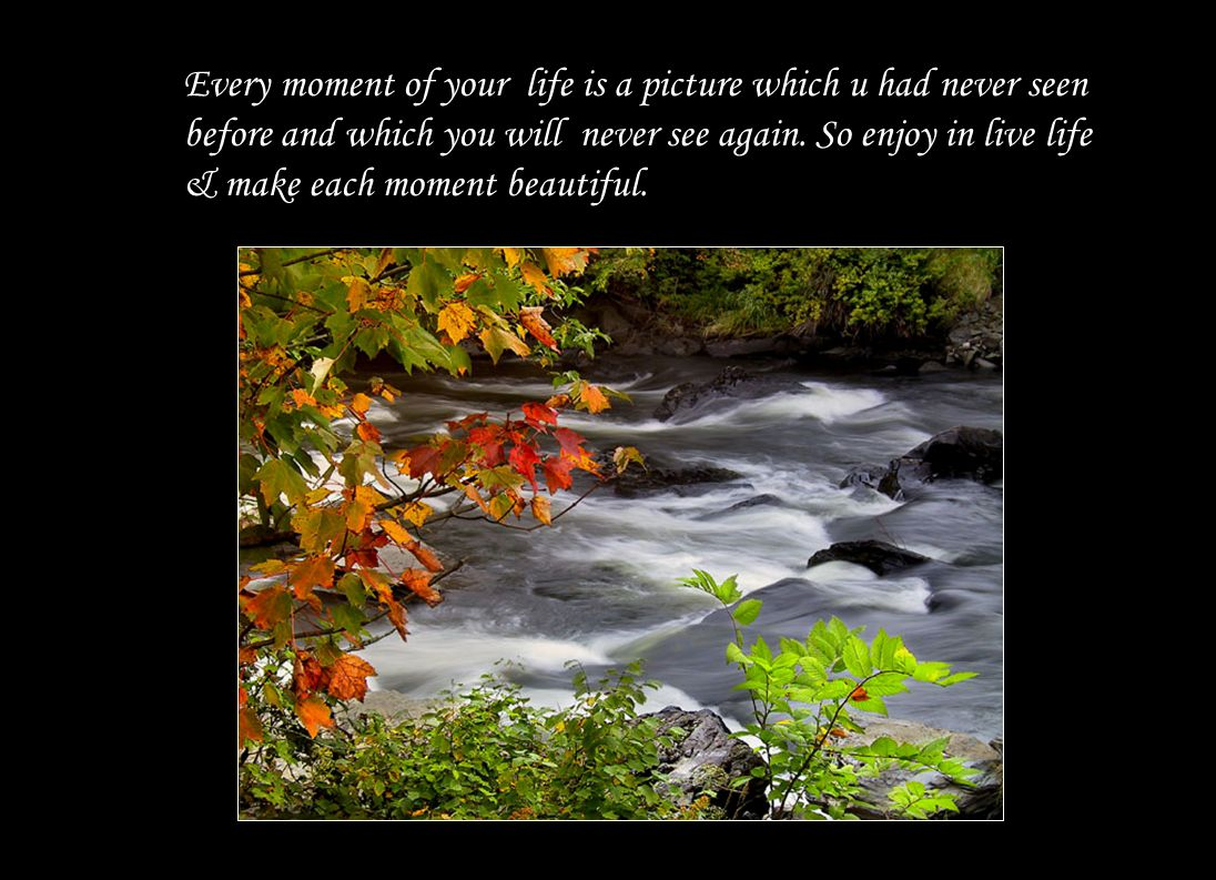 Life is not measured by breaths we take in a moment but by the moments that take our breath away