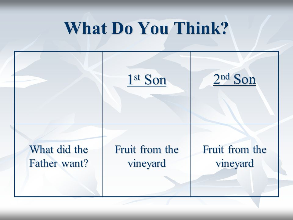 What Do You Think 1 st Son 2 nd Son What did the Father want Fruit from the vineyard