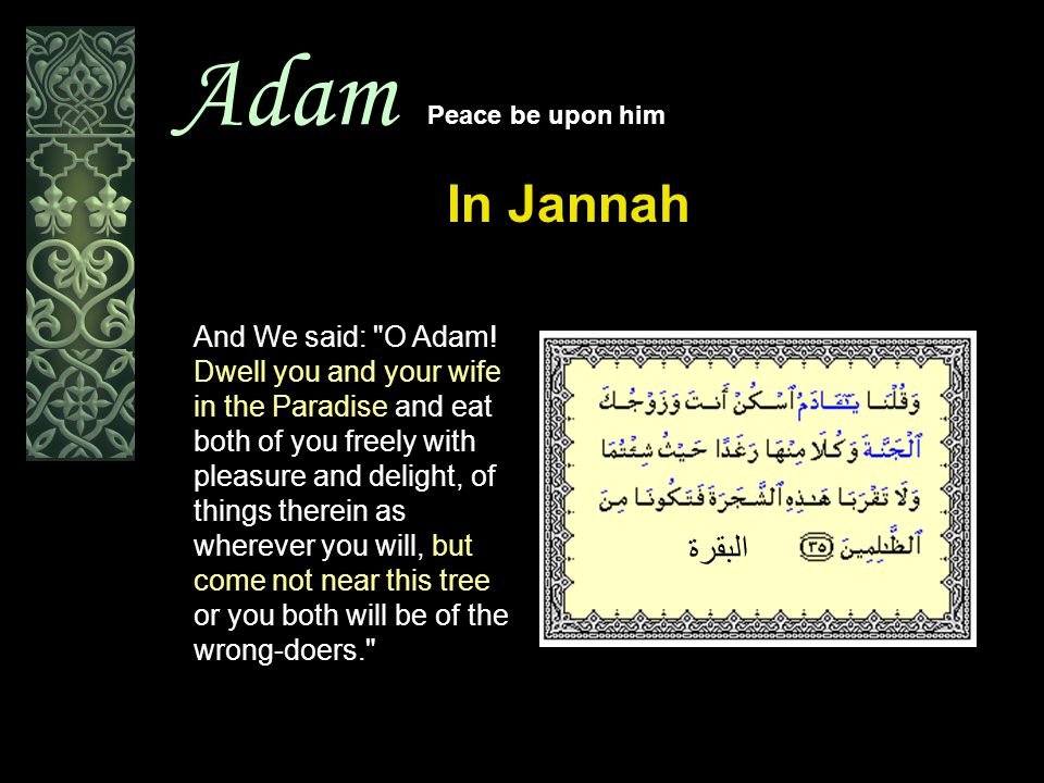 Adam Peace be upon him In Jannah And We said: