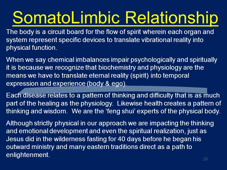 20 SomatoLimbic Relationship The body is a circuit board for the flow of spirit wherein each organ and system represent specific devices to translate