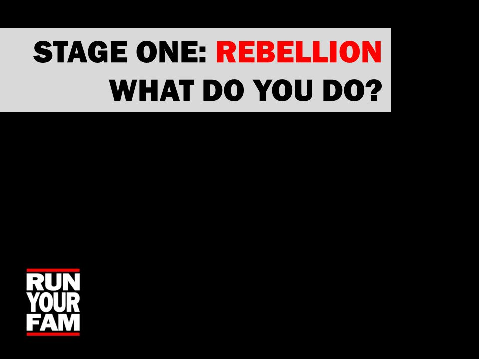 STAGE ONE: REBELLION WHAT DO YOU DO?