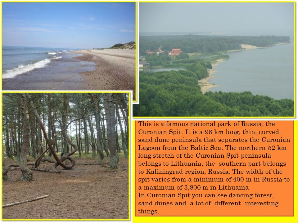 This is a famous national park of Russia, the Curonian Spit.