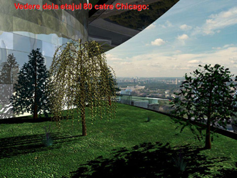 Vedere dela etajul 80 catre Chicago: