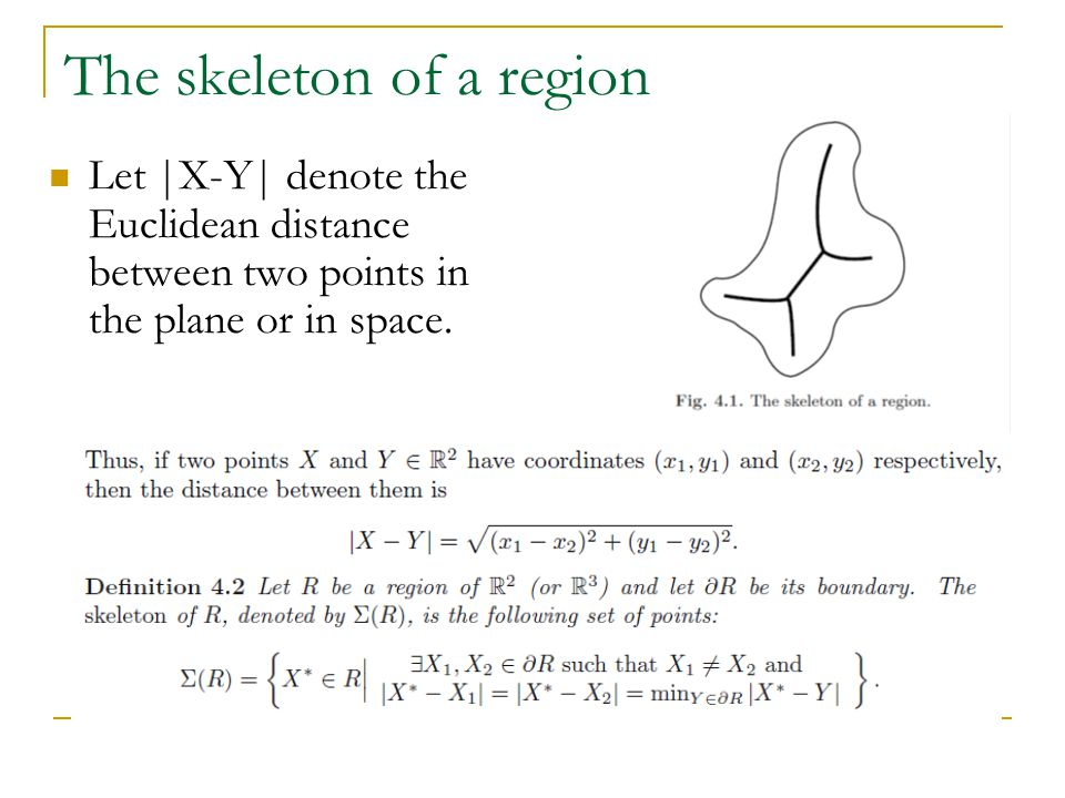 The skeleton of a region Let |X-Y| denote the Euclidean distance between two points in the plane or in space.