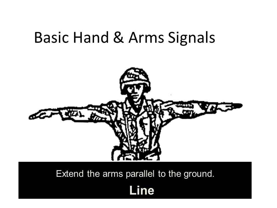 Basic Hand & Arms Signals Line Extend the arms parallel to the ground.