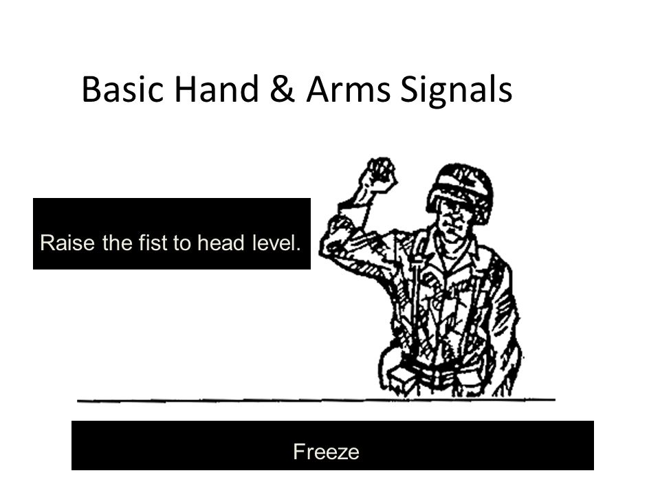 Basic Hand & Arms Signals Freeze Raise the fist to head level.