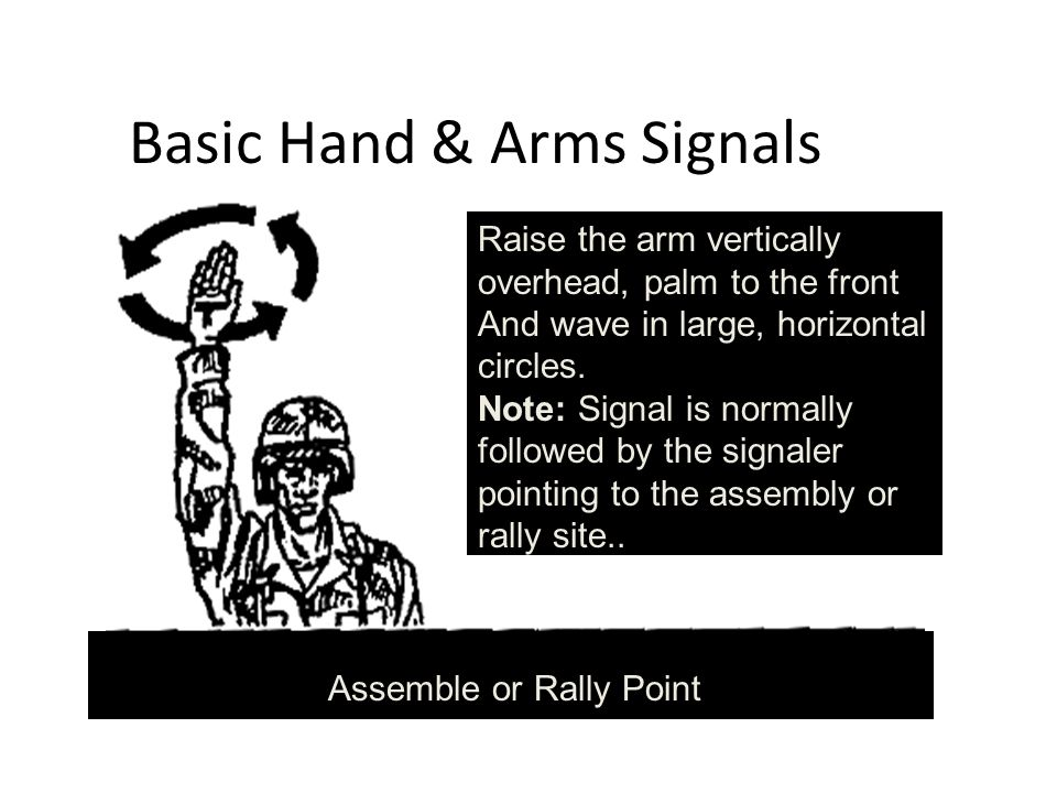 Basic Hand & Arms Signals Raise the arm vertically overhead, palm to the front And wave in large, horizontal circles.