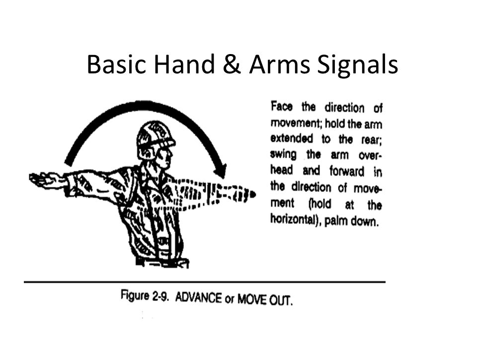 Basic Hand & Arms Signals