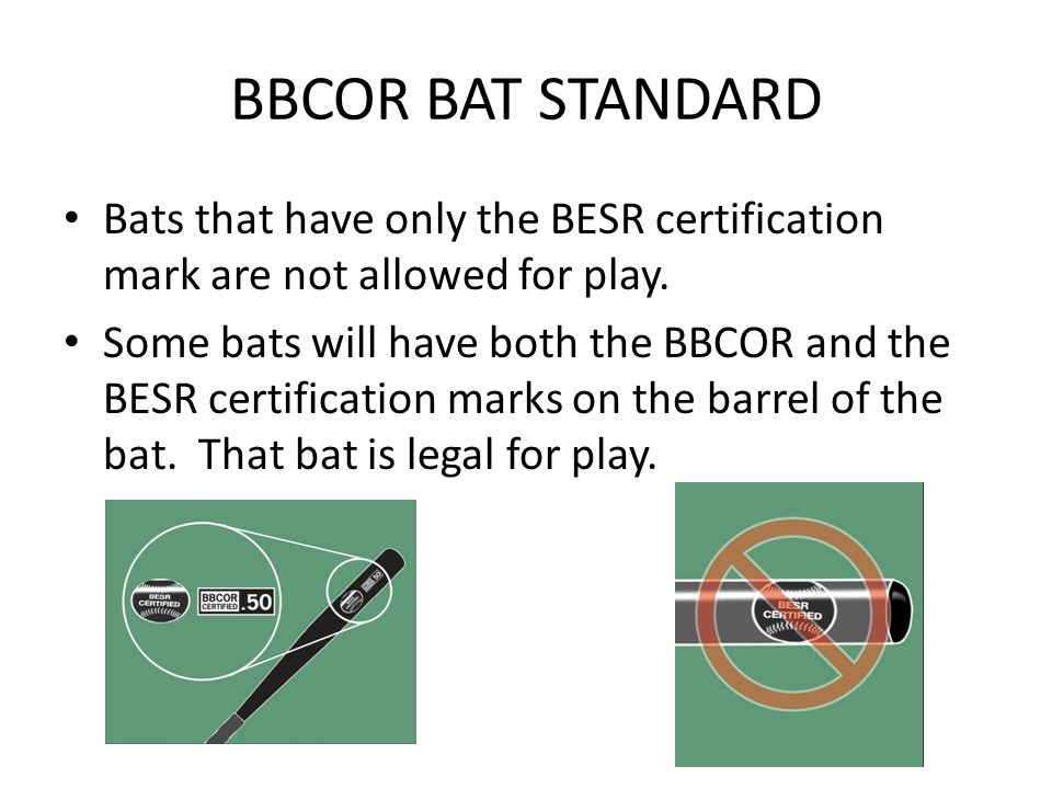 Bats that have only the BESR certification mark are not allowed for play.