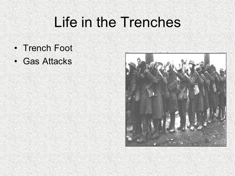 Life in the Trenches Trench Foot Gas Attacks Trench Rats Bad Food Body Lice Fear of Death Some of these rats grew extremely large.