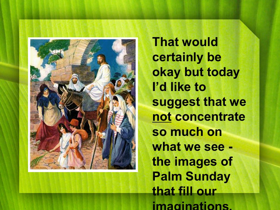 That would certainly be okay but today I'd like to suggest that we not concentrate so much on what we see - the images of Palm Sunday that fill our imaginations.