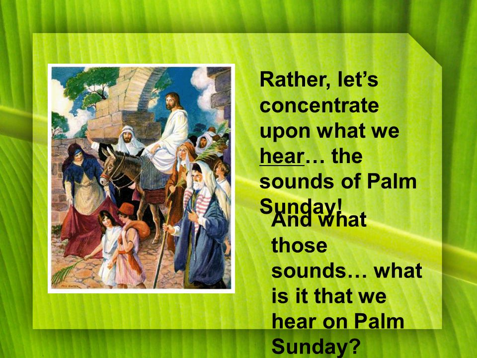 Rather, let's concentrate upon what we hear… the sounds of Palm Sunday.