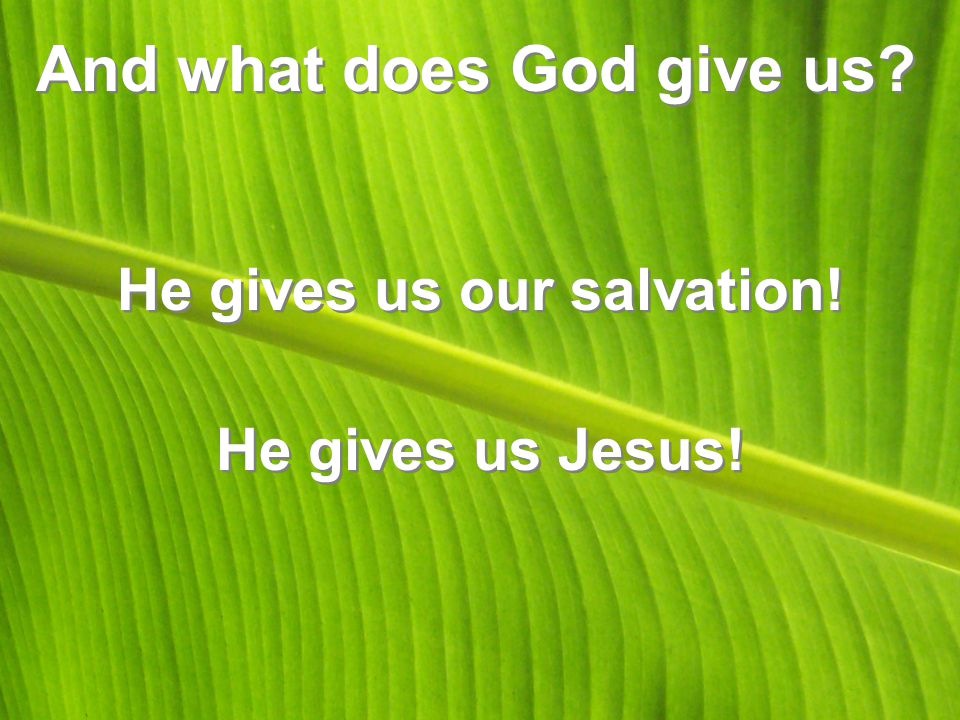 And what does God give us? He gives us our salvation! He gives us Jesus!