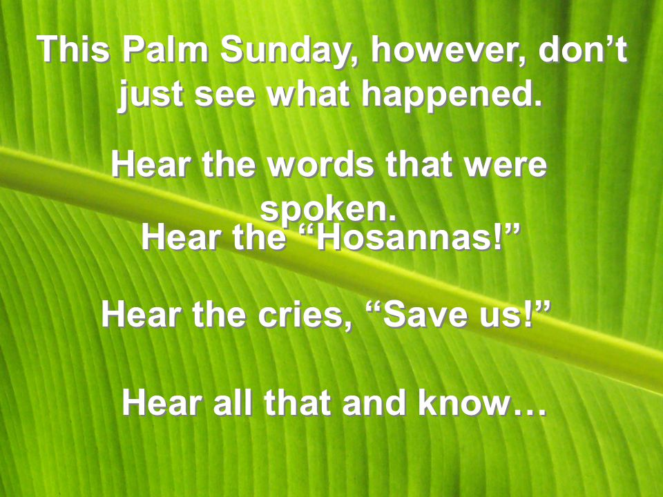 This Palm Sunday, however, don't just see what happened.