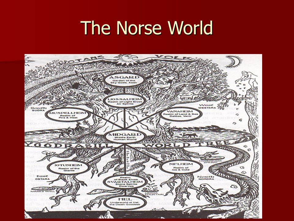 The Norse World