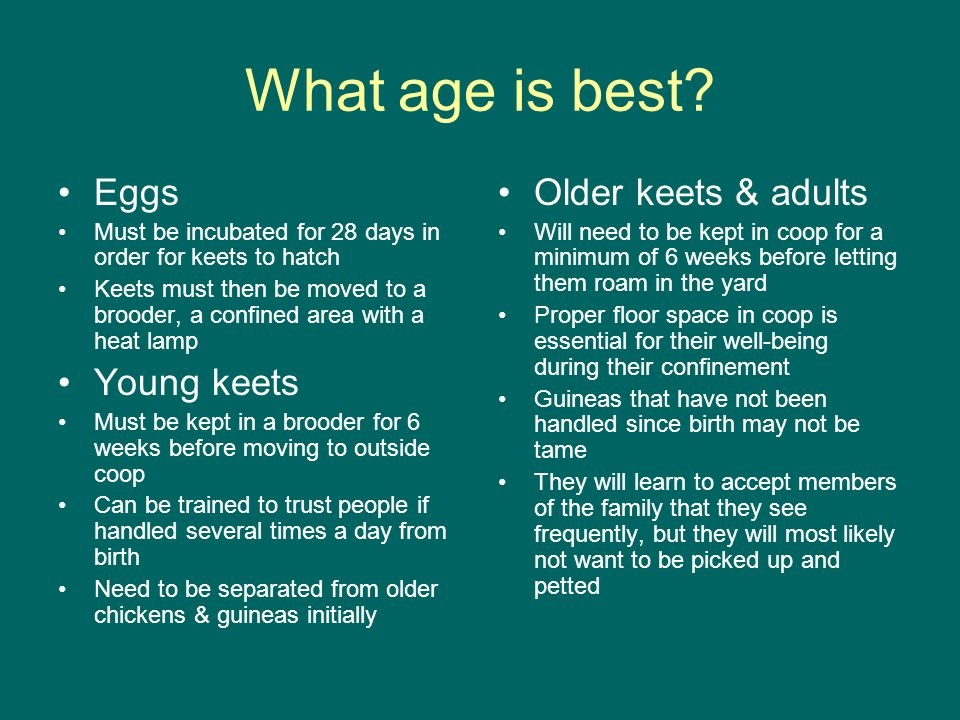 What age is best.