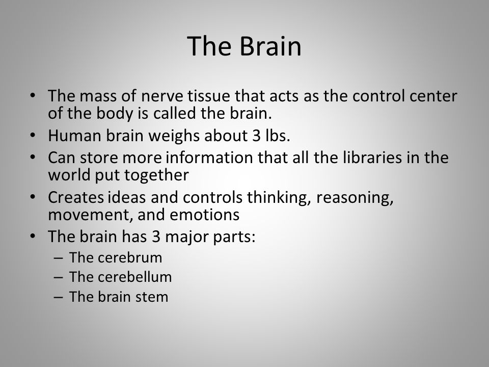 The Brain The mass of nerve tissue that acts as the control center of the body is called the brain.