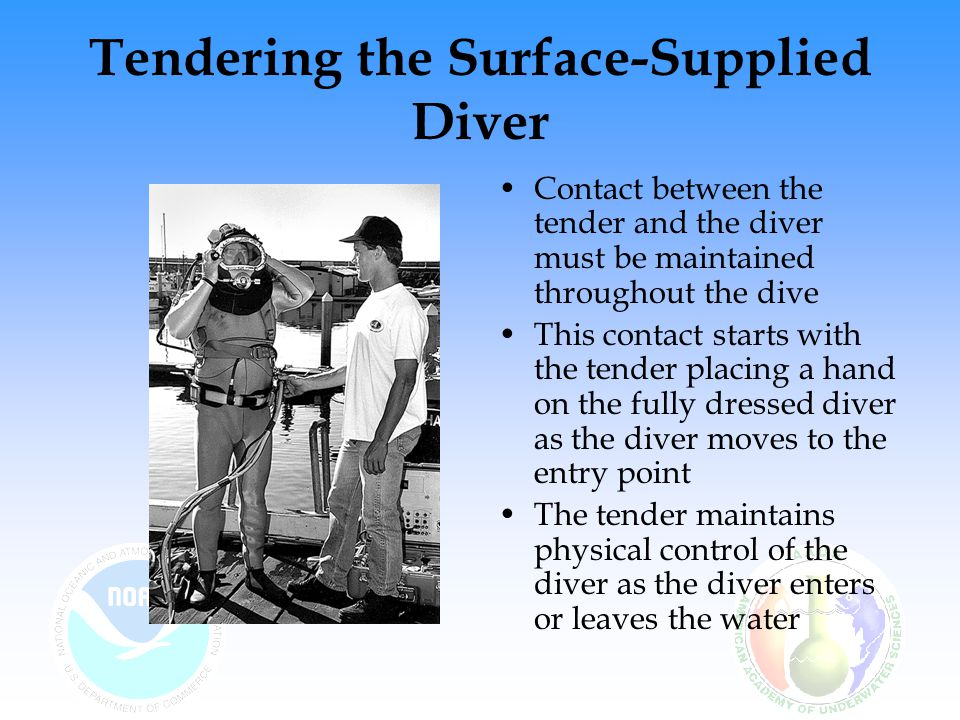 Tendering the Surface-Supplied Diver Contact between the tender and the diver must be maintained throughout the dive This contact starts with the tend