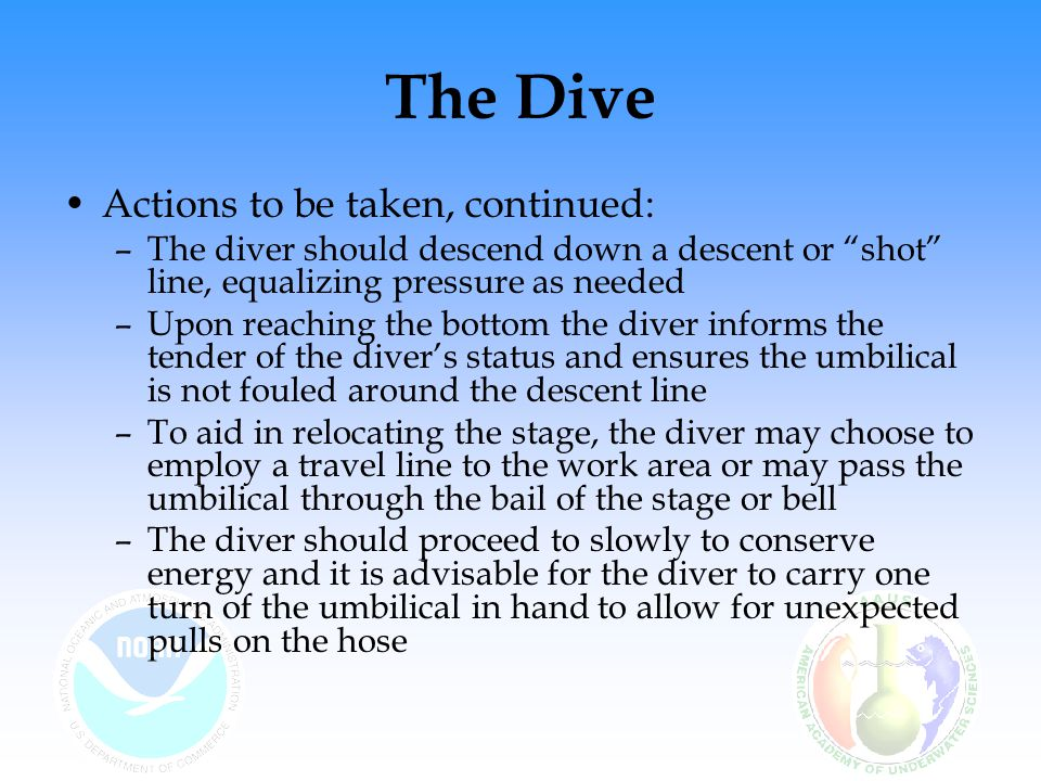 """The Dive Actions to be taken, continued: –The diver should descend down a descent or """"shot"""" line, equalizing pressure as needed –Upon reaching the bot"""