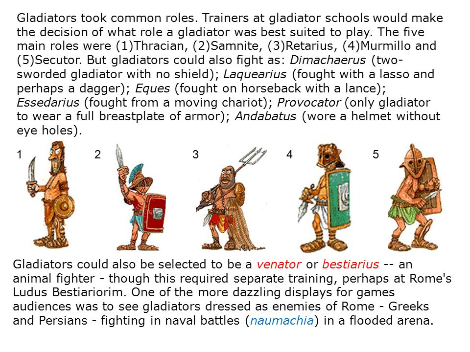 Gladiators took common roles. Trainers at gladiator schools would make the decision of what role a gladiator was best suited to play. The five main ro
