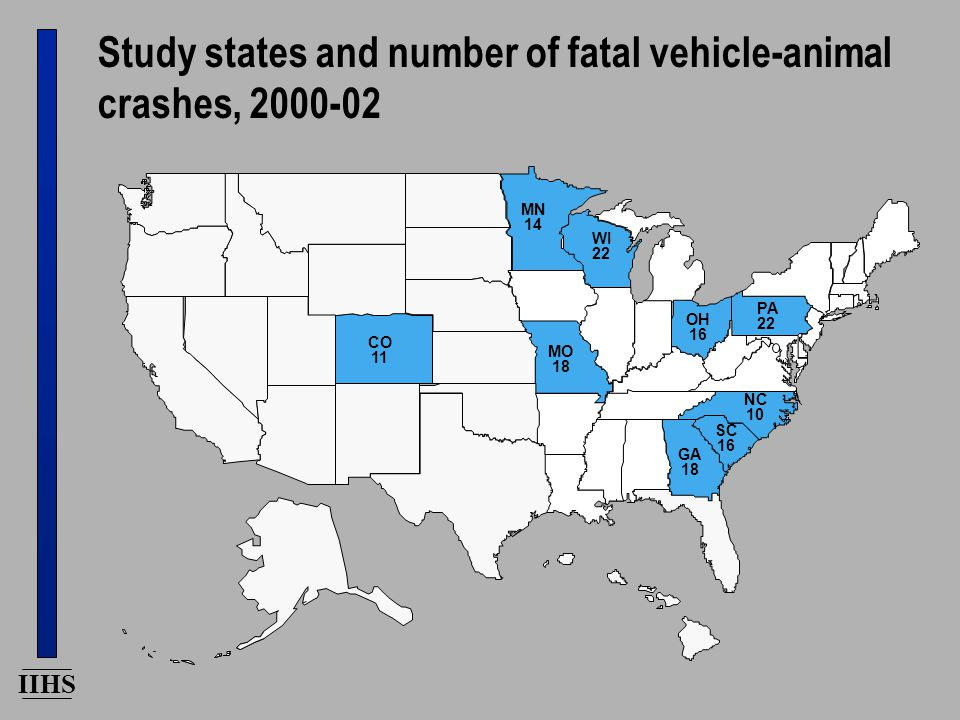 IIHS Study states and number of fatal vehicle-animal crashes, 2000-02 PA 22 NC 10 SC 16 GA 18 OH 16 WI 22 MO 18 CO 11 MN 14