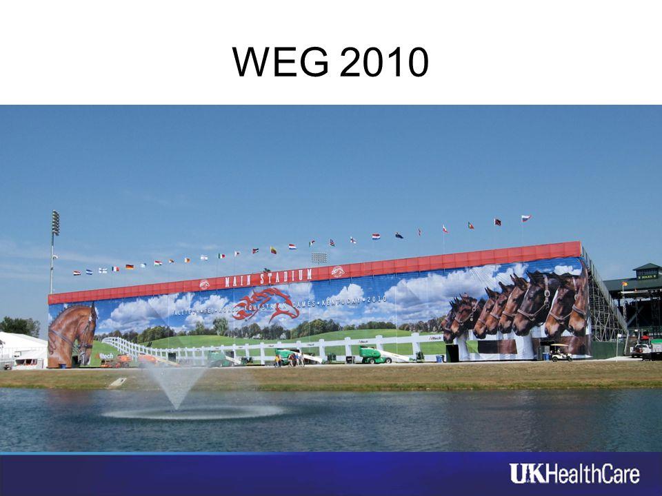 WEG 2010 18