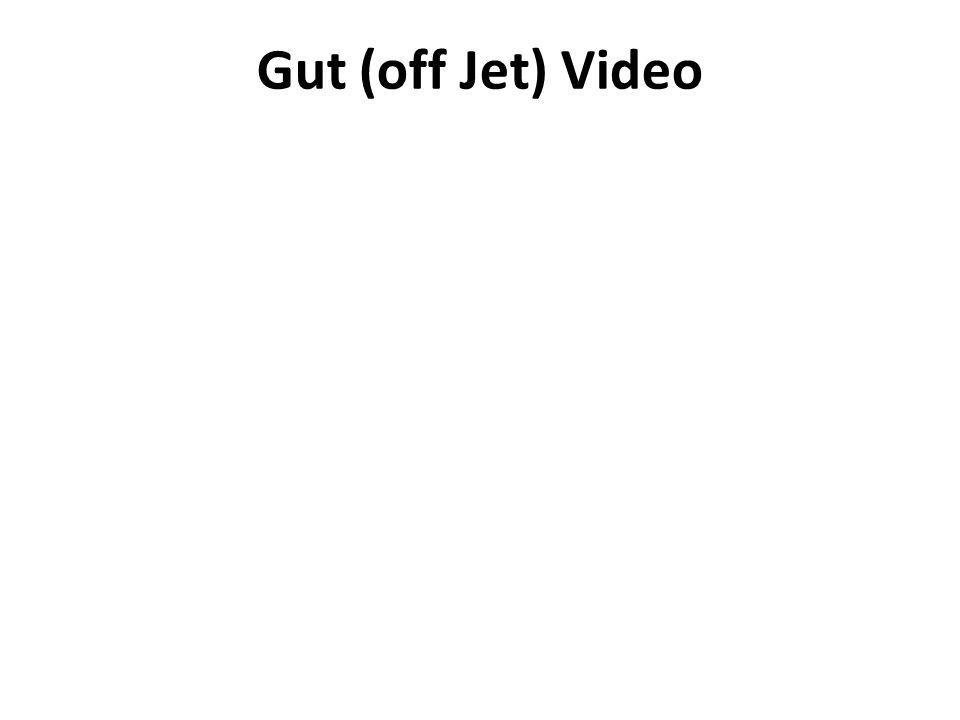 Gut (off Jet) Video