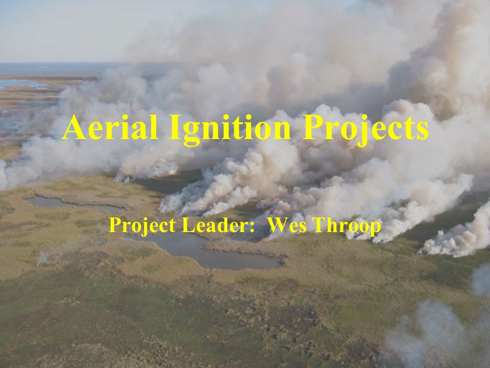 Aerial Ignition Projects Project Leader: Wes Throop