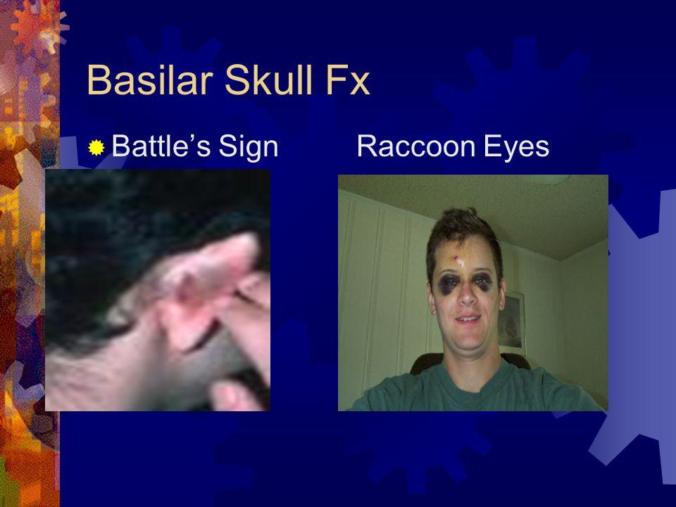  Battle's SignRaccoon Eyes
