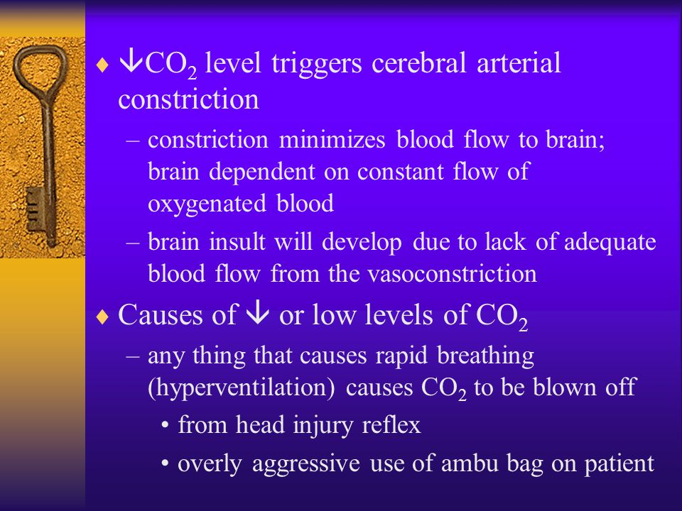   CO 2 level triggers cerebral arterial constriction –constriction minimizes blood flow to brain; brain dependent on constant flow of oxygenated blo