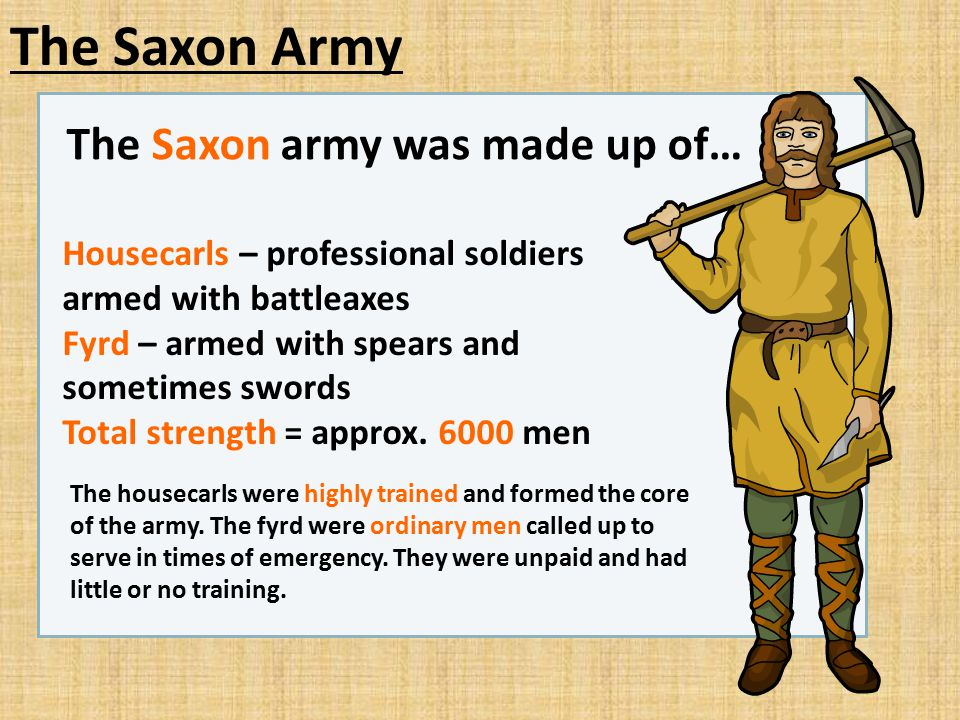 The Saxon Army The Saxon army was made up of… Housecarls – professional soldiers armed with battleaxes Fyrd – armed with spears and sometimes swords T