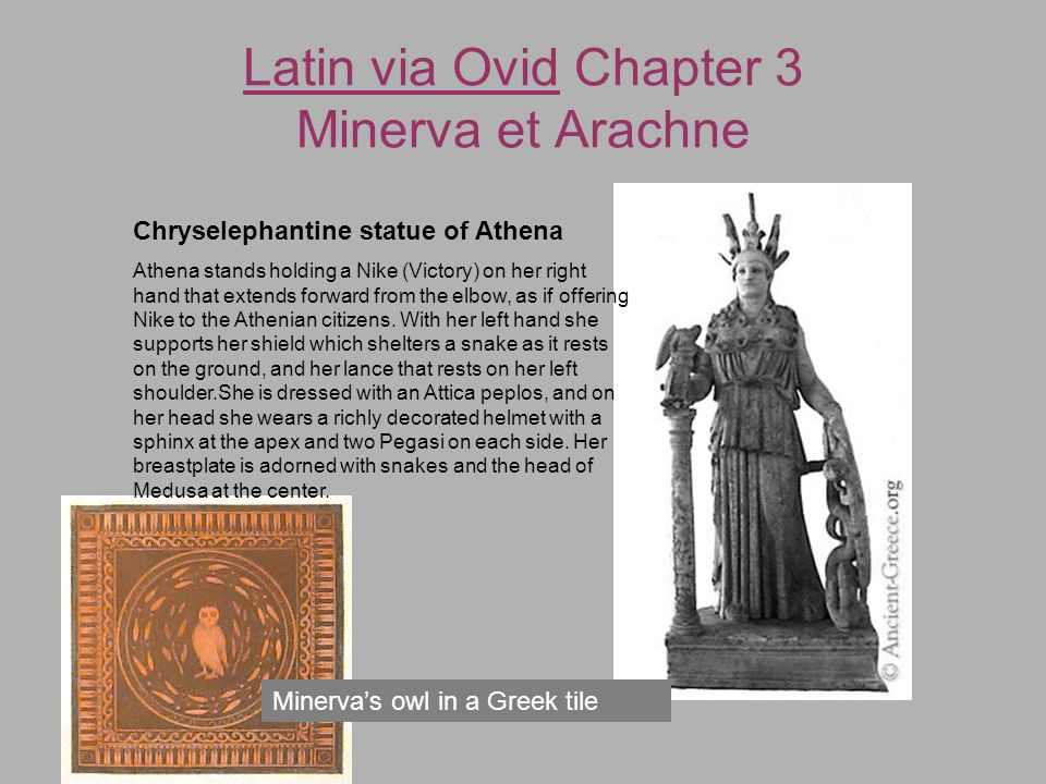 Latin via Ovid Chapter 3 Minerva et Arachne Minerva's owl in a Greek tile Chryselephantine statue of Athena Athena stands holding a Nike (Victory) on