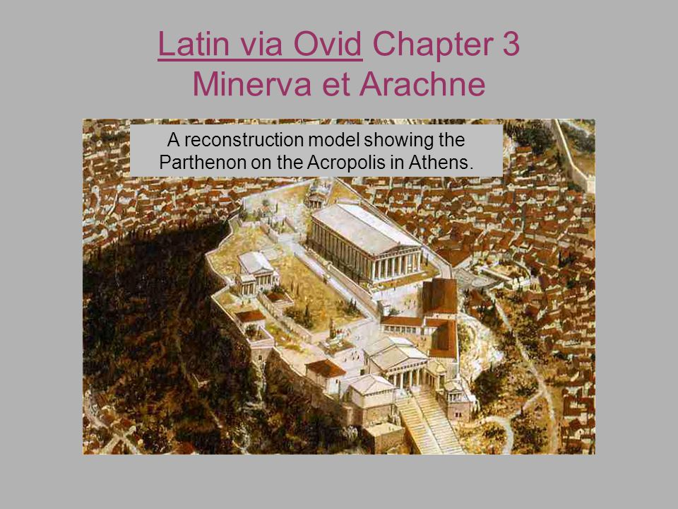 Latin via Ovid Chapter 3 Minerva et Arachne A cross-section of the front of the Parthenon illustrating the various decorative elements in the architecture of the building.