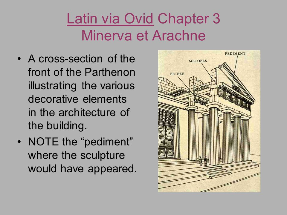 Latin via Ovid Chapter 3 Minerva et Arachne Characteristics of the goddess Athena: Athena (Minerva) is often represented in art with her attributes as a war goddess: helmet, spear, and shield (the aegis, on which the head of the gorgon Medusa is depicted)
