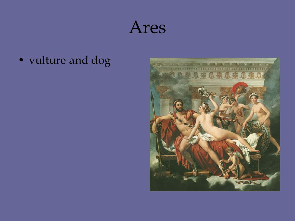 Ares vulture and dog