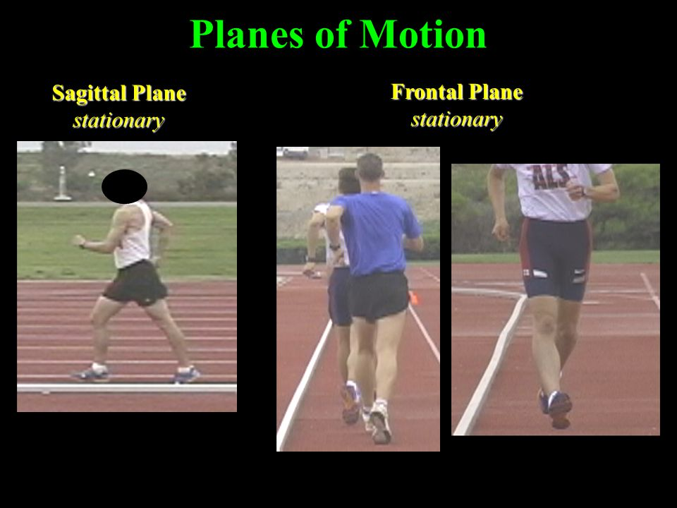 Planes of Motion Sagittal Plane stationary Frontal Plane stationary