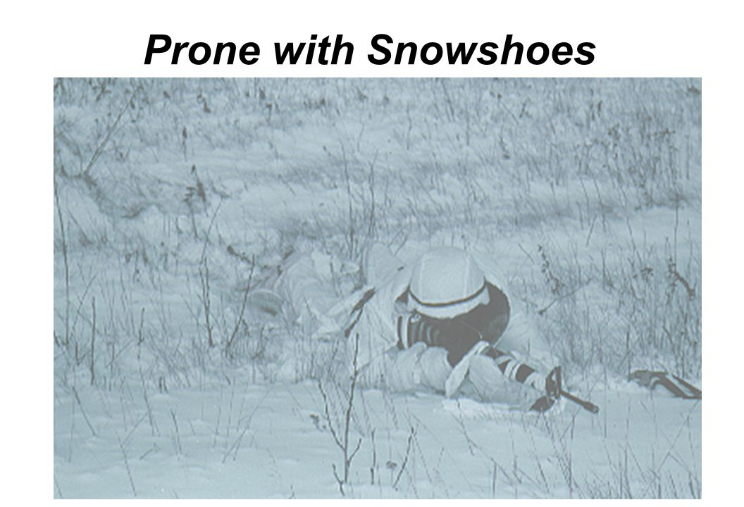 Prone with Snowshoes