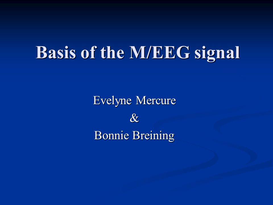 Basis of the M/EEG signal Evelyne Mercure & Bonnie Breining