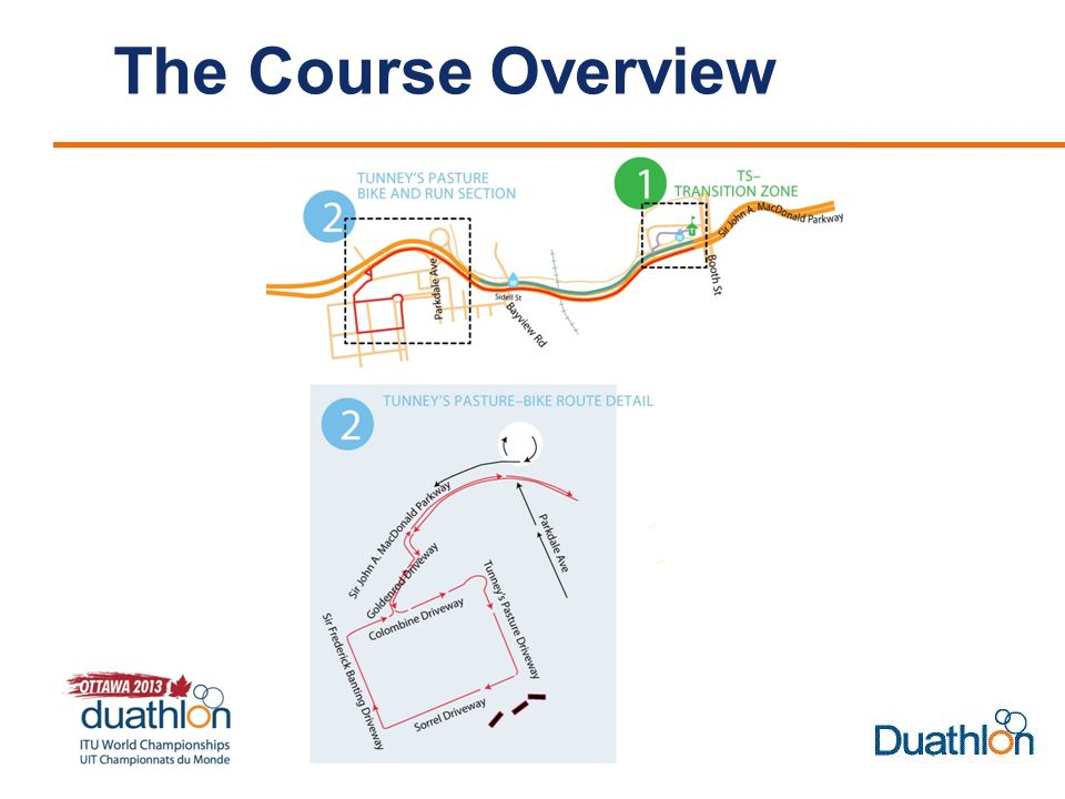 The Course Overview