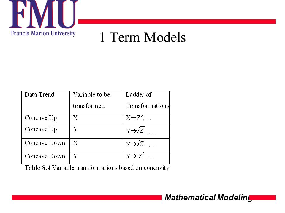 Mathematical Modeling 1 Term Models