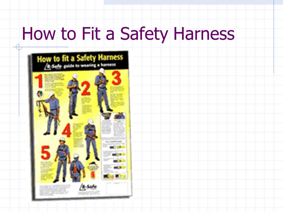 How to Fit a Safety Harness