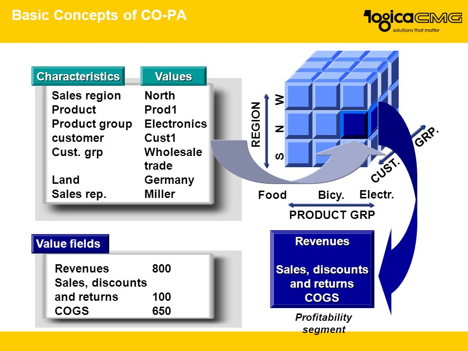 Basic Concepts of CO-PA CUST. GRP.