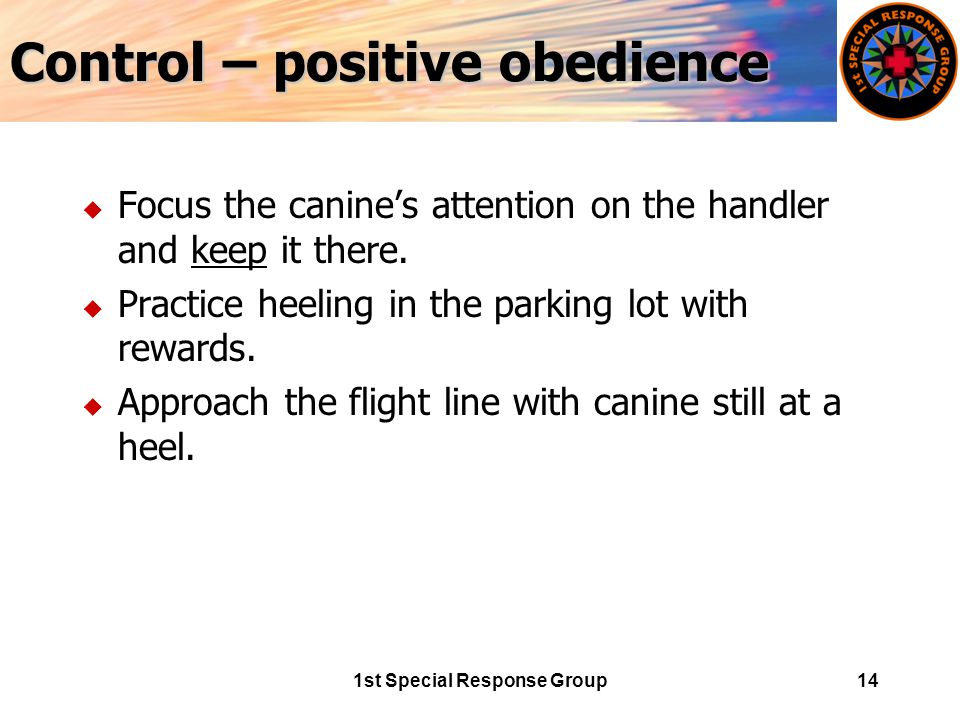 1st Special Response Group14 Control – positive obedience u Focus the canine's attention on the handler and keep it there.