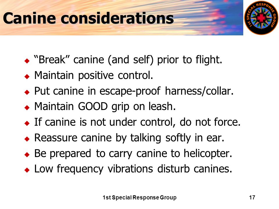 1st Special Response Group17 Canine considerations u Break canine (and self) prior to flight.