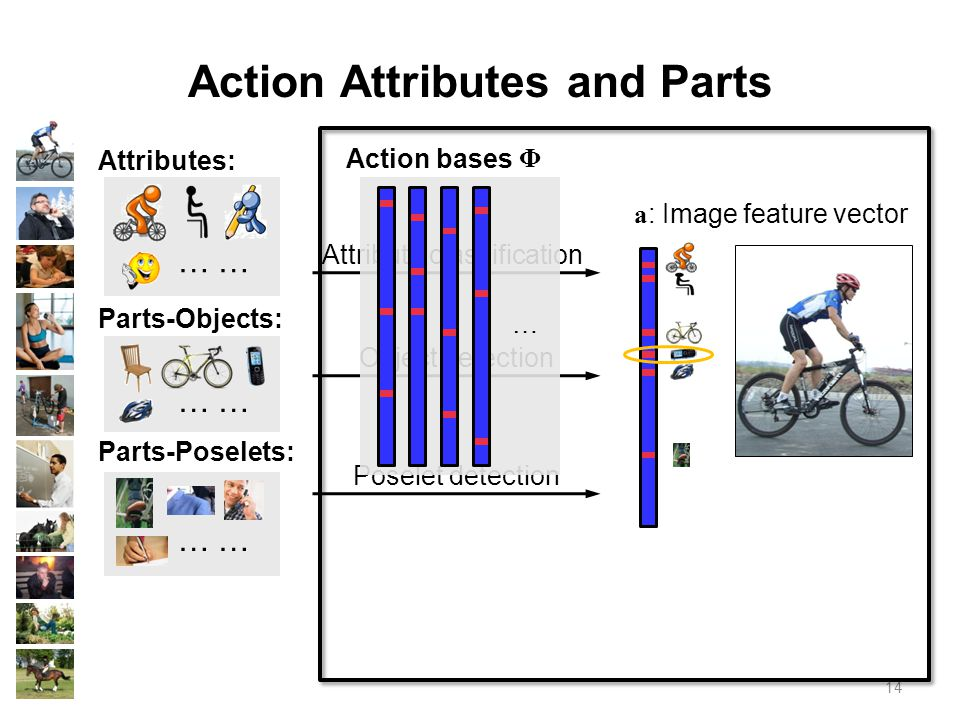 14 Action Attributes and Parts Attributes: …… Parts-Objects: …… Parts-Poselets: …… Attribute classification Object detection Poselet detection a : Image feature vector … Action bases Φ
