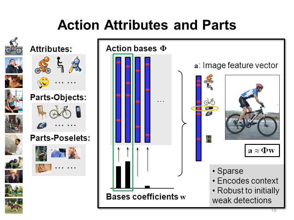 18 Action Attributes and Parts Attributes: …… Parts-Objects: …… Parts-Poselets: …… … Action bases Bases coefficients w Φ a : Image feature vector Sparse Encodes context Robust to initially weak detections